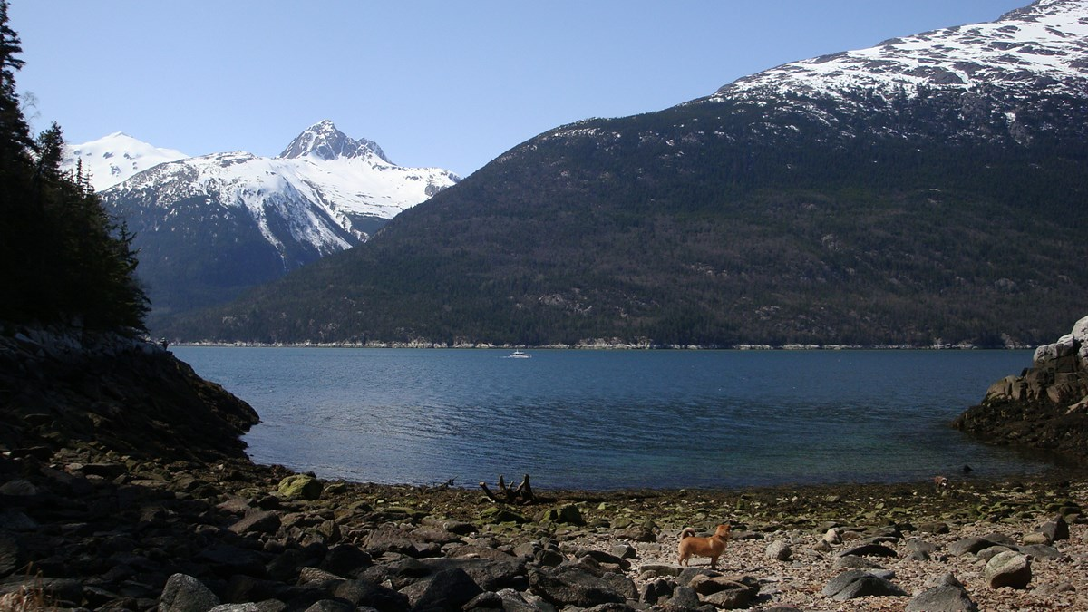 Modern photo looking from the beach to Taiya Inlet