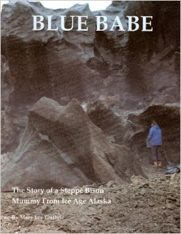 Blue Babe - The Story of a Steppe Bison Mummy from Ice Age Alaska