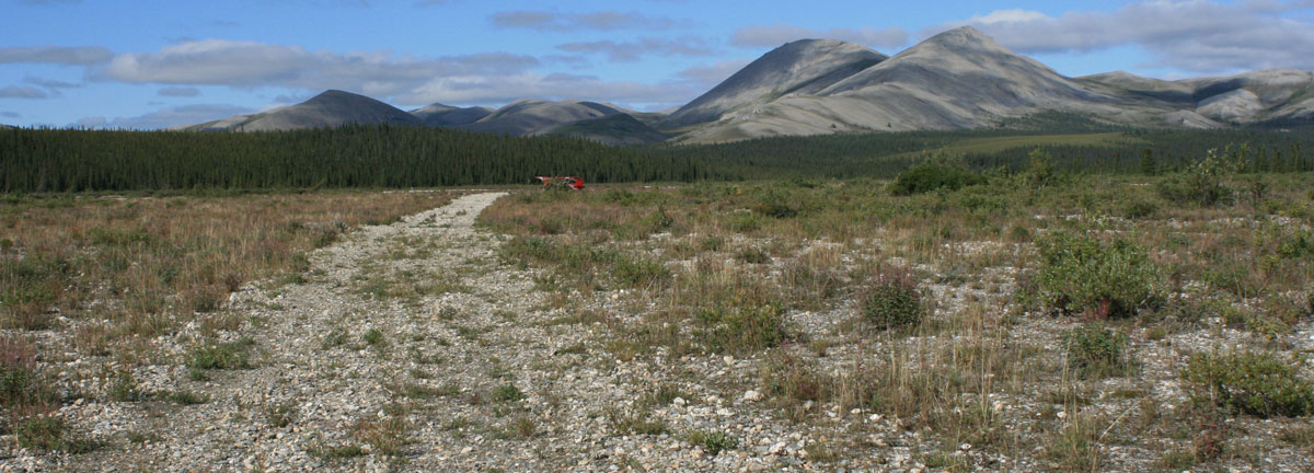 Backcountry Airstrip | NPS Photo, T. Federal
