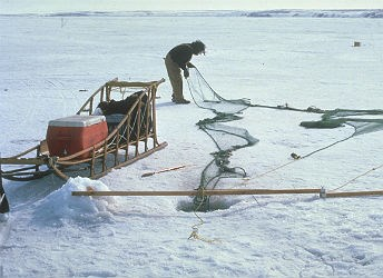 man setting fishing nets under the ice