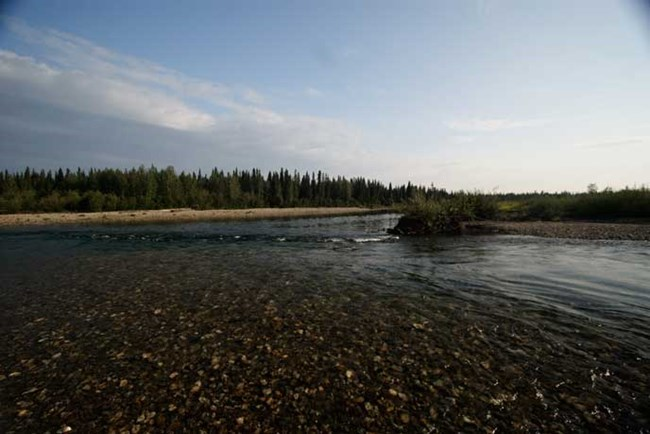gravel bar along river