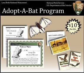 Adopt-A-Bat Summary Image