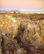 Lava Beds Summer Landscape
