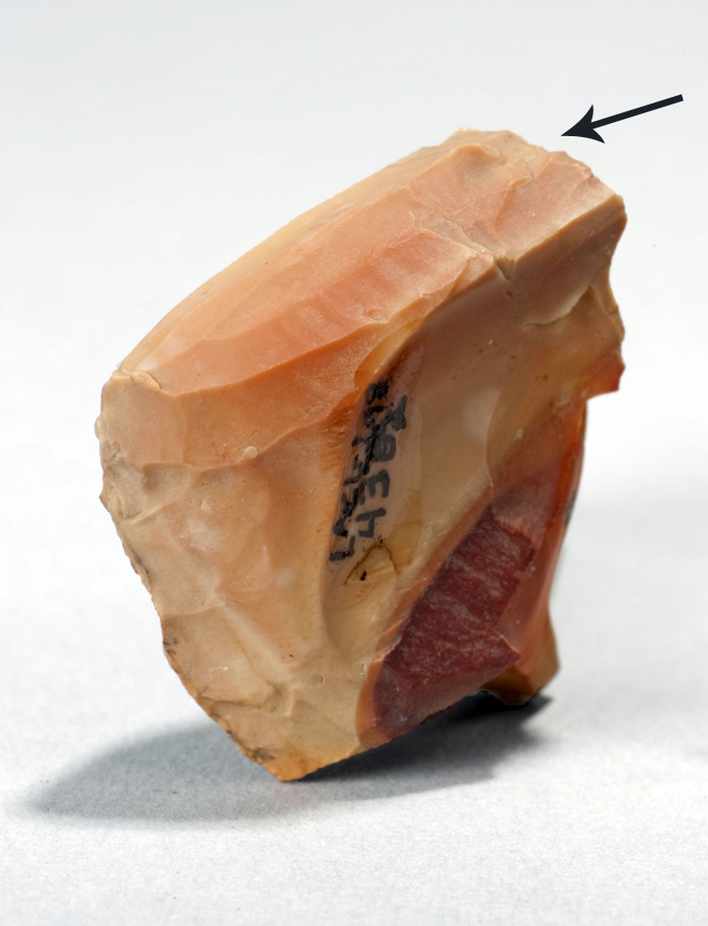 Seen here is a micro-blade core made out of a beautiful peachy chert from the site west of Lower Twin Lake. The arrow points to the direction the micro-blades were struck off of this core. Can you see the long, thin scars left on the core?
