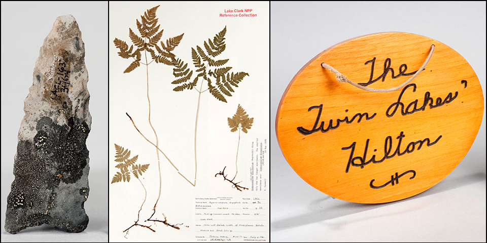 "Photo montage of three items from the museum collections, an arrowhead encrusted with lichen, a plant sample, and an oval sign with the words ""Twin Lakes Hilton"" carved into it."