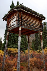 photo of a small log structure on tall wooden poles.