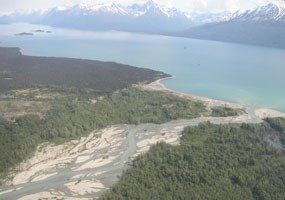 aerial view looking down at a braided river delta where it flows into a large lake bound by tall, snow capped mountains.