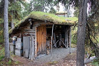 Log home dick p