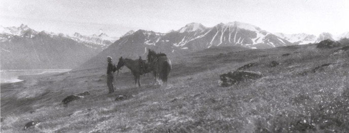 a man stands near two horses on a tree-less hilside, steep mountains in the distance
