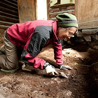 Woman on hands and knees carefully scrapes through archeology site with tools.