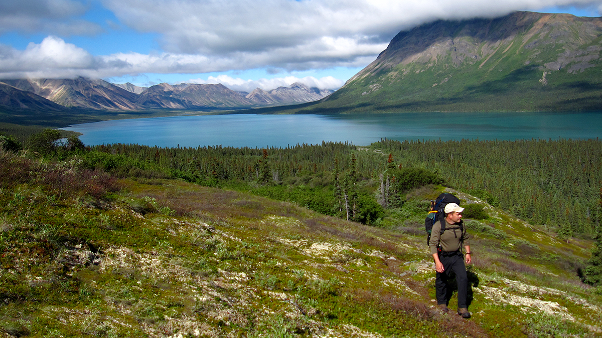 A man wearing a backpack walks in alpine tundra above a bright turquoise-hued lake that is bound by tall, colorful mountains.