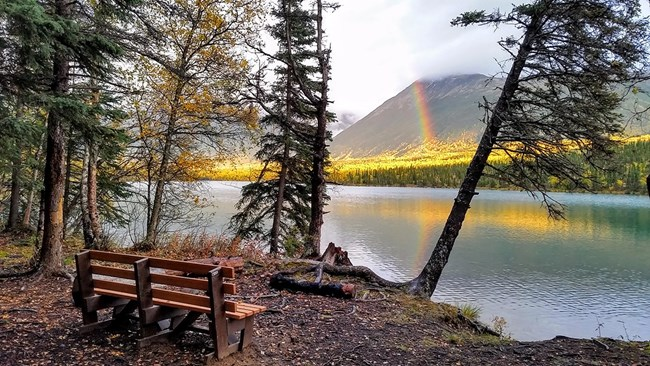 A wooden bench sits on forested lakeshore overlooking a mountain with a rainbow in front of it.