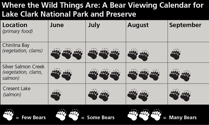 Chinitna Bay = many bears June & July, some bears August, few bears September. Silver Salmon Creek = some bears June and September, many bears July and August. Crescent Lake = few bears June, some bears July, August and September.
