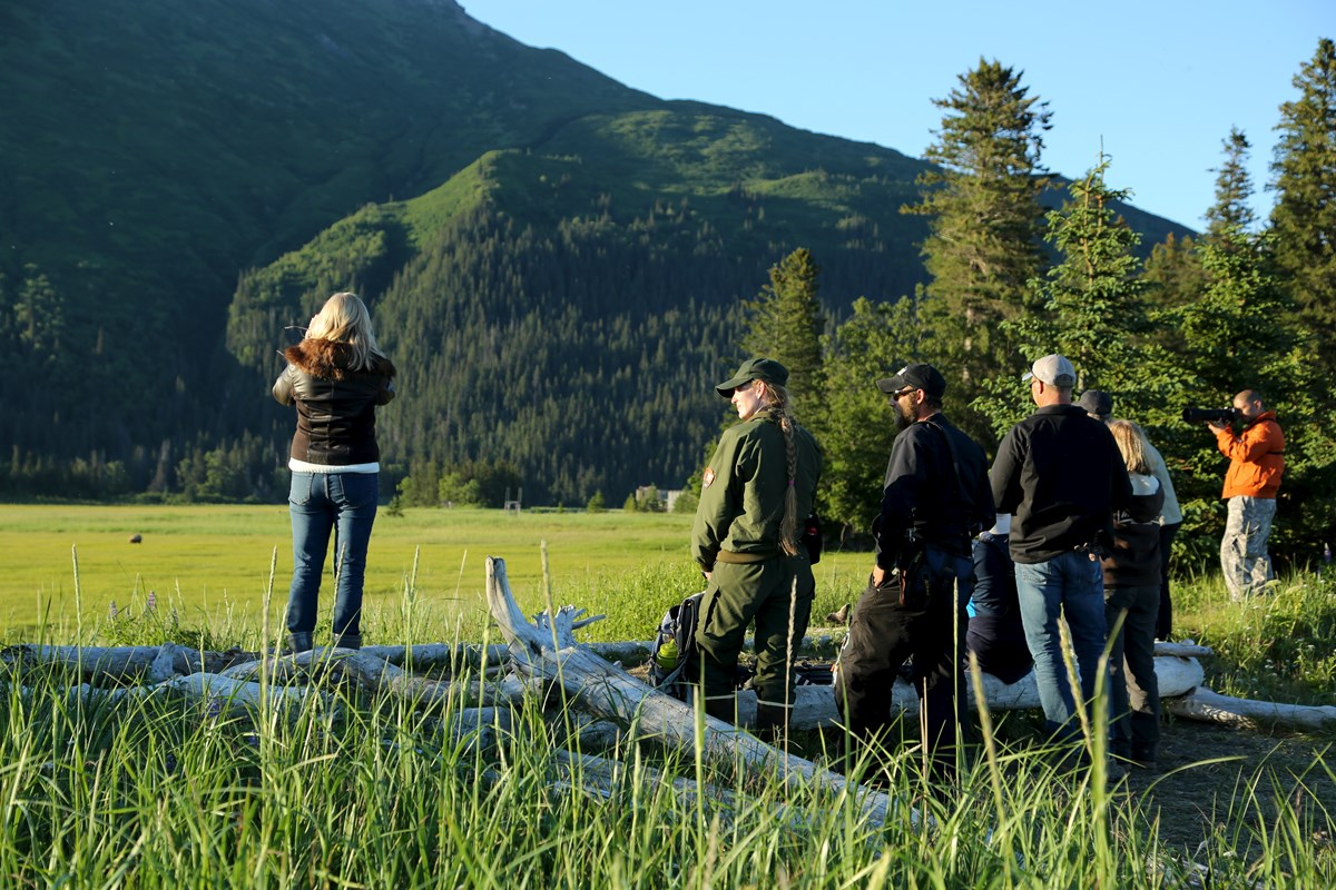 visitors stand next to a park ranger while viewing a bear at the Chinitna Bay sedge meadow