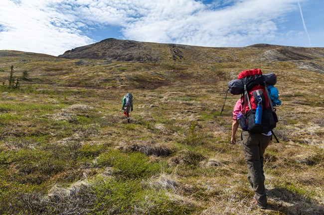 Hikers climbing up a hill covered in tundra
