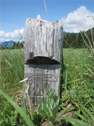 Photo of a short wooden post with the outline of a bear carved into it.