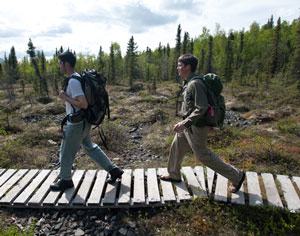 two men hiking on a boardwalk through sparse forest