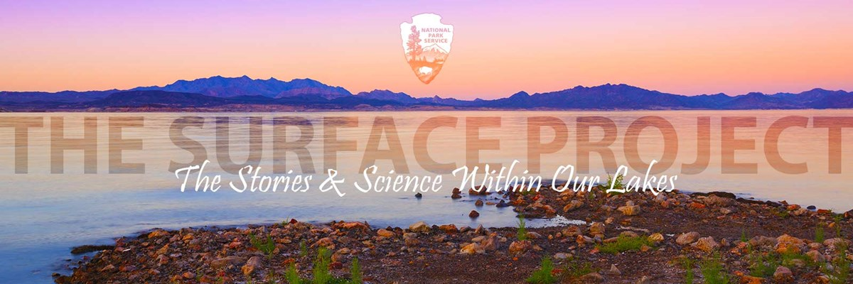 The Surface Project - The Stories and Science Living Within Our Lakes