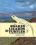 SNAKES-LIZARDS-&-TURTLES-OF-THE-LAKE-MEAD-REGION-2