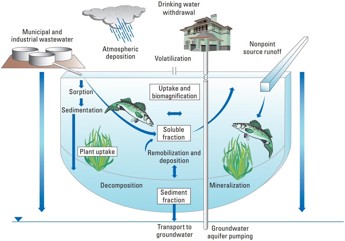 contaminants - lake mead national recreation area (u.s. national