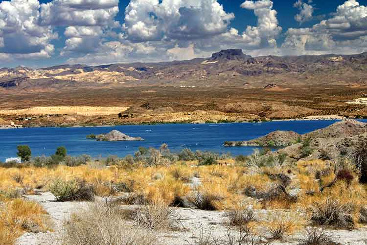 The desert shores of Lake Mohave