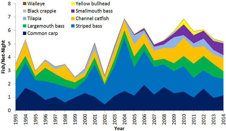 Lake Mead catch rates of sportfish