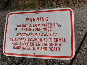 Roger's-Spring-Warning-Sign