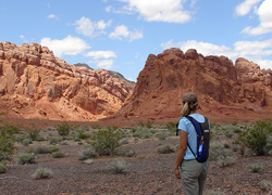 Hiker in Wilderness Area enjoying the red rocks of Lake Mead National Recreation Area