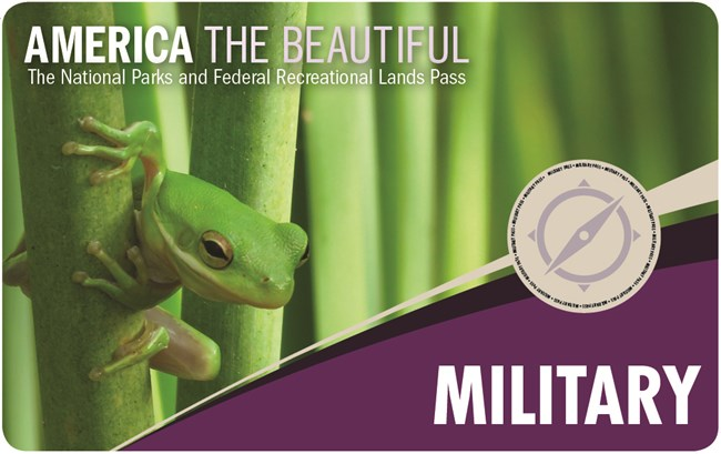 Military park pass cover with photo of small green tree frog peeking out from foliage