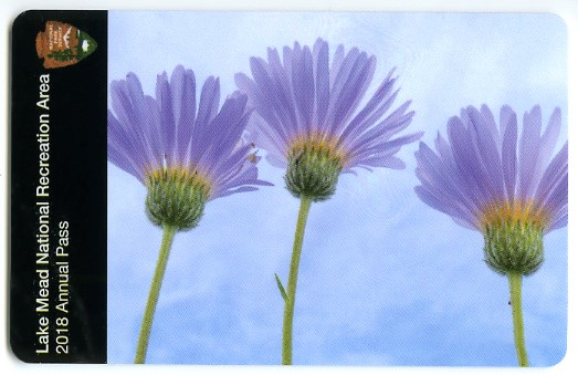 Pass card with photo of 3 purple flowers from below with blue sky