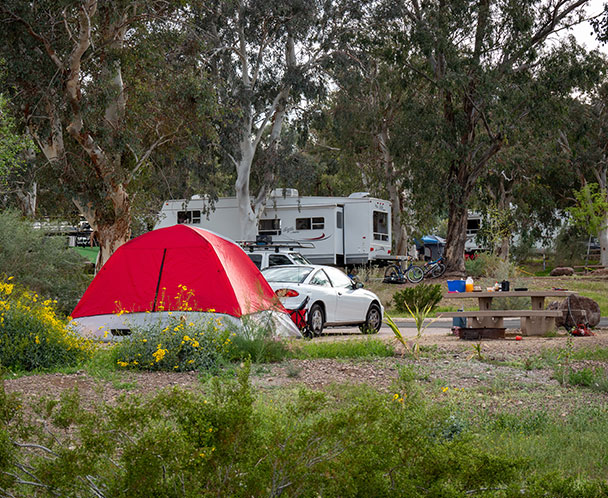 Boulder Beach Campgrounds