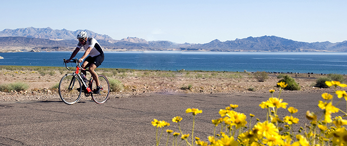 Bicycling Header Image