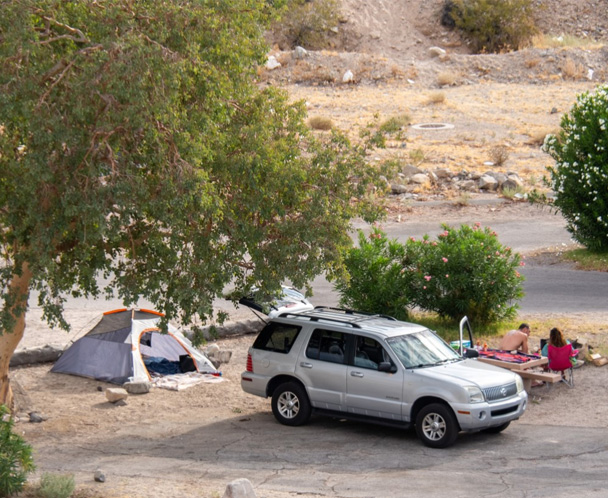 Cottonwood Cove Campgrounds
