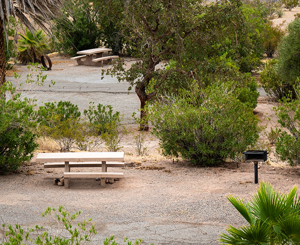 Echo Bay Campgrounds