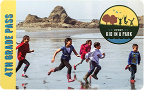 Park pass with photo of five children running along beach