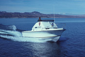 A Ranger Boat on Lake Mead