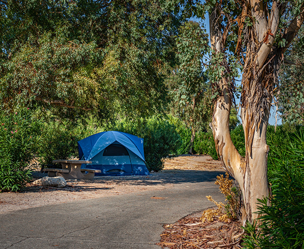Temple Bar Campgrounds