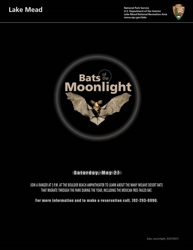 Photo from above of bat with wings outstretched in a circle graphic. Text describes program. Click image to open pdf.