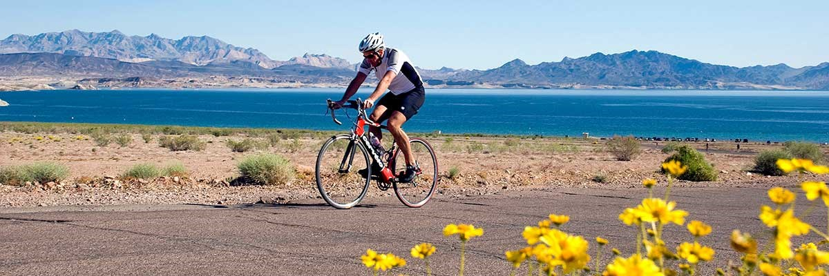 Cyclist on asphalt road, lake in background, yellow wildflowers in foreground