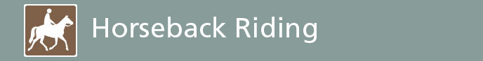 Image of Horseback Riding Icon Link