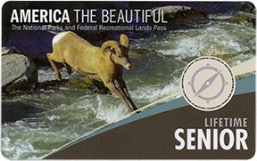 Pass card with photo of bighorn sheep jumping over rushing river