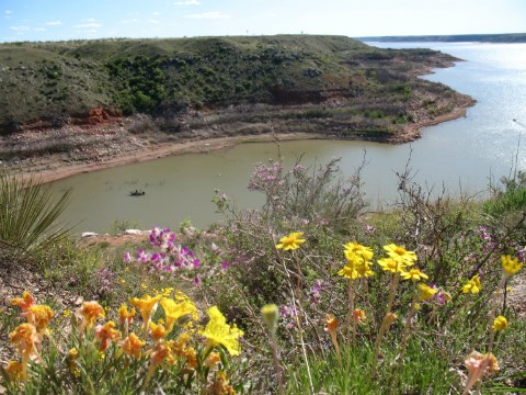 Wildflowers overlook a boater on Lake Meredith.