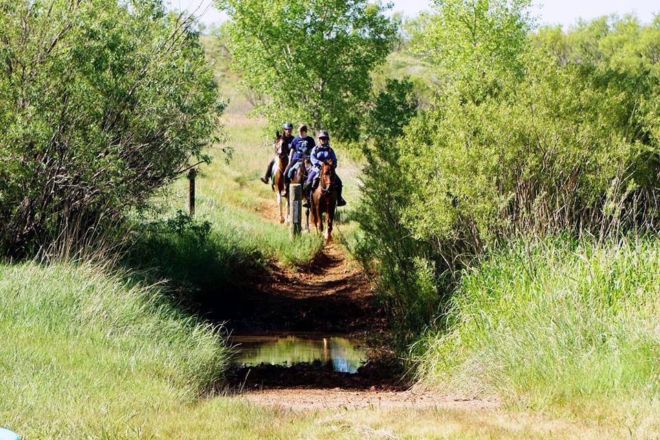 Horseback riding lake meredith national recreation area for Lake meredith fishing report