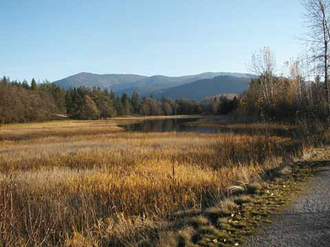 View from the Kettle Falls trail. Autumn colored grasses, orange and brown, with rising pool of water in distance.
