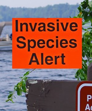 "An orange warning sign states ""Invasive Species Alert"" with a lake and boat in the background."