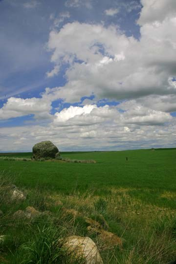 Erratic in a field. Giant bolder in a green field. Blue sky and clouds overhead.