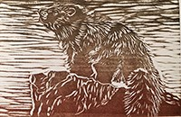 Woodblock print of a marmot