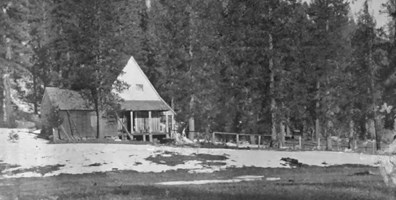 black and white photo of rustic cabin in woods