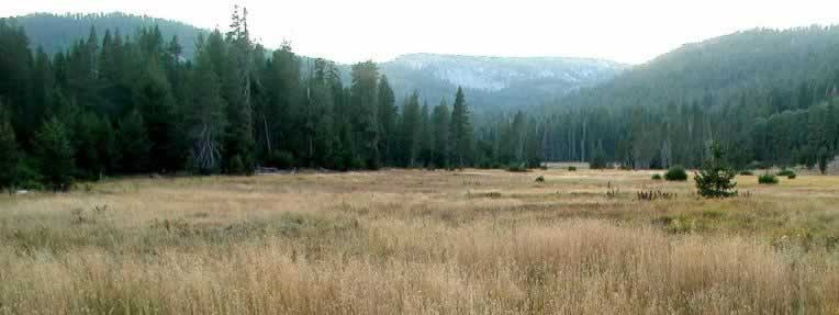 open meadow near Drakesbad with valley rims along both sides