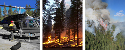 three images with one showing firefighter loading ignition balls on helicopter, another showing a prescribed fire burning, and the last showing the crown fire during 2004's Bluff fire.